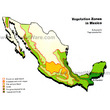Mexico Vegetation Zones