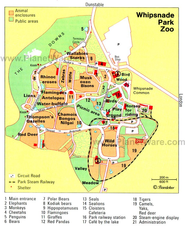 Zoo Map Template Whipsnade Park Zoo Map Jpg