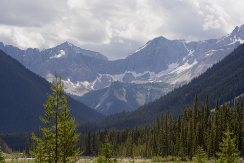 mountains kootenay national park - photo #9