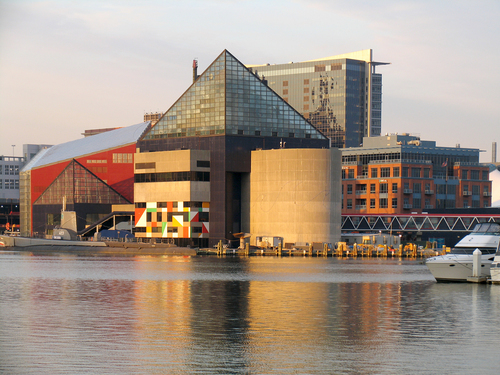 http://www.planetware.com/i/photo/national-aquarium-baltimore-mdbt10.jpg