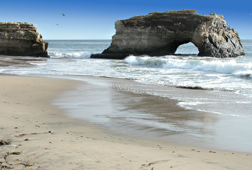 Natural Bridges State Park, Santa Cruz.