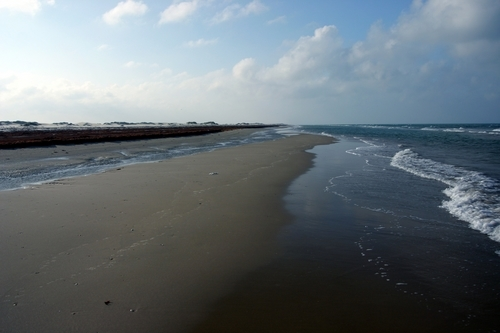 South Padre Island Attractions Coupons