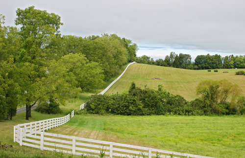 Prados de pasto ~ White-fence-around-horse-farm-in-virginia-va286