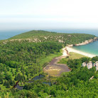 Picture - View from a hiking trail in Acadia National Park.