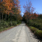 Picture - Backwoods road with Fall foliage, Acadia National Park.