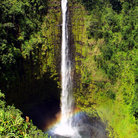 Picture - Akaka Falls west of Hilo.