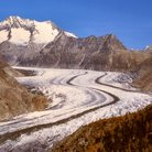 Picture - The Aletsch Glacier.