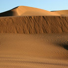 Picture - Sand Dunes in Imperial Sand Dunes Recreation Area, Brawley.