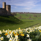 Picture - Flowers in front of Alnwick Castle.
