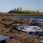 Picture - In the distance are the ruins of Dunstanburgh Castle.