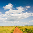 Picture - Dirt Road in Amboseli National Park.