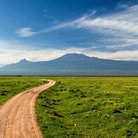 Picture - View of Mt Kilimanjaro from Amboseli National Reserve.