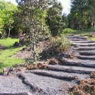 Picture - Trail in Greenwell Ethnobotanical Garden, Hawaii.