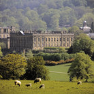 Picture - Sheep in front of Chatsworth house in Bakewell.