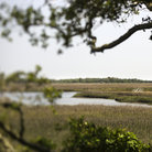 Picture - Marsh landscape on Bald Head Island, North Carolina.
