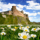 Picture - Bamburgh Castle.