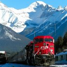 Picture - A train through Banff National Park.