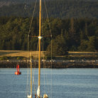Picture - Sailing boat at Bar Harbor.