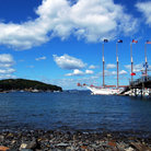 Picture - A tall ship in Bar Harbor.