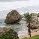 Picture - Mushroom-like rocks carved by the sea near Bathsheba.