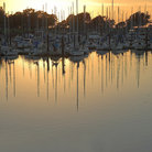 Picture - Marina at sunset, Berkeley.