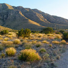 Picture - Desert landscape of Big Bend National Park.