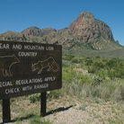 Picture - Warning sign for bear and mountain lion in Big Bend National Park.