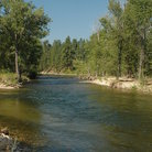 Picture - River in Bitterroot National Forest, Montana.