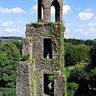 Picture - Vien covered tower at Blarney Castle.