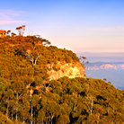 Picture - Late afternoon at Blue Mountains National Park.