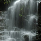 Picture - Sylvia Waterfall, Blue Mountains National.