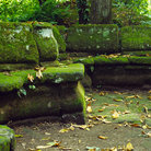 Picture - Moss covered bench in Bomarzo.
