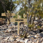 Picture - Boothill cemetery in Tombstone.
