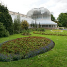 Picture - The Belfast Botanic Gardens.