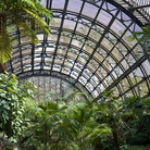 Picture - Interior view of the Botanical Building at Balboa Park in San Diego.