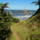Picture - North Island Trail leads to the Pacific Ocean, Brookings, Oregon.