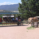 Picture - Horse-drawn wagon ride at Buckskin Joe Park in Canon City, CO.