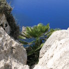 Picture - White cliffs of Cap Formentor.