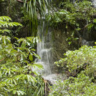 Picture - Waterfall in the rainforset outside Cairns.