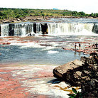 Picture - People swim at base of Salt Yuruan  waterfall on La Gran Sabana in Parque Nacional Canaima (Canaima National Park).