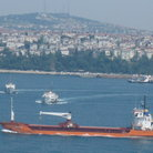 Picture - View of ships in Bosphorous from Topkapi Palace in Istanbul.