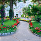 Picture - A public garden on Capri.