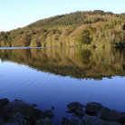 Picture - Lake at Castlewellan.
