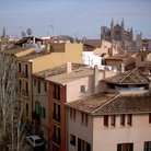 Picture - Palma Cathedral and rooftops.