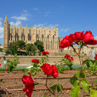 Picture - Flowers in front of the Cathedral at Palma de Mallorca.