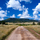 Picture - Roadway through pasture near Chama, New Mexico.