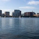 Picture - Sailboats on Charles River in Boston.