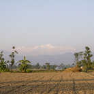 Picture - Landscape of Chitwan National Park.