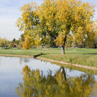 Picture - City Park Golf Course in Denver.