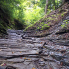 Picture - Layered prehistoric canyon bed at Fall of the Ohio State Park.